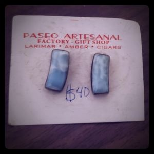 Earrings NWT